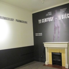Museum of Heath - Blog - Century install 013